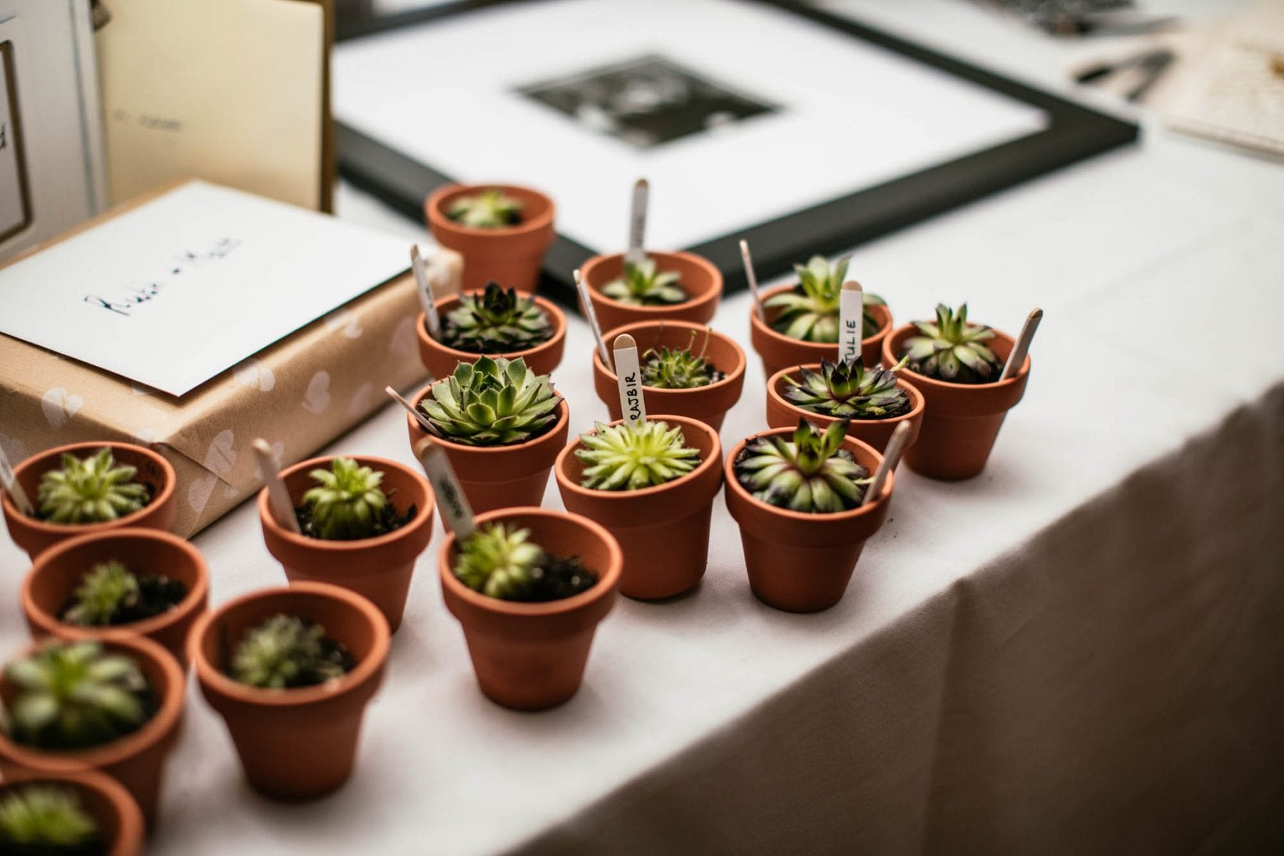 Creative Wedding Photographs Mere Court Hotel Cheshire
