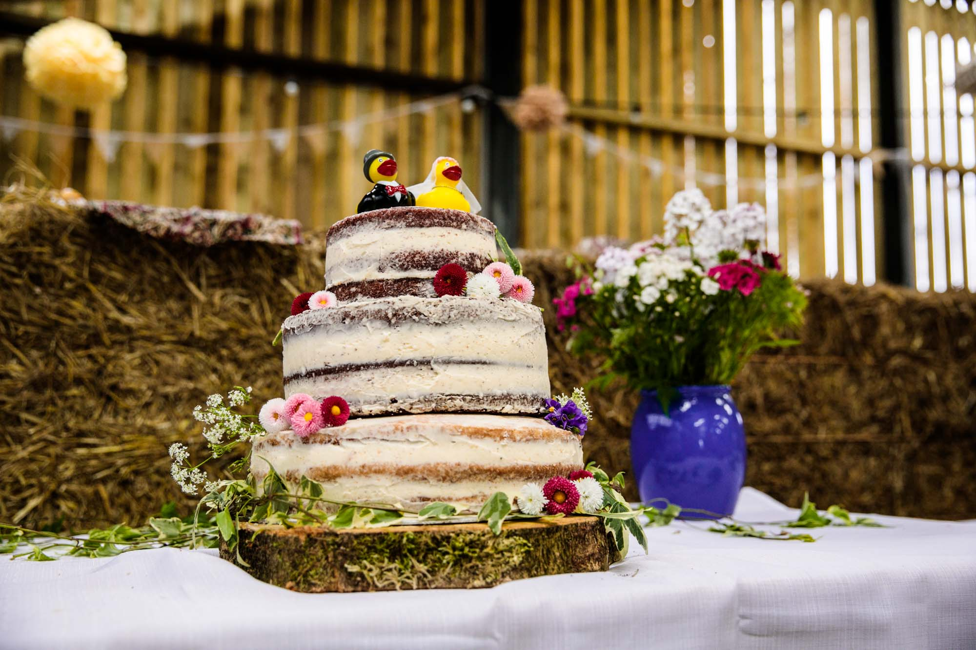 Thornsett Fields Farm Wedding Reception Photographs