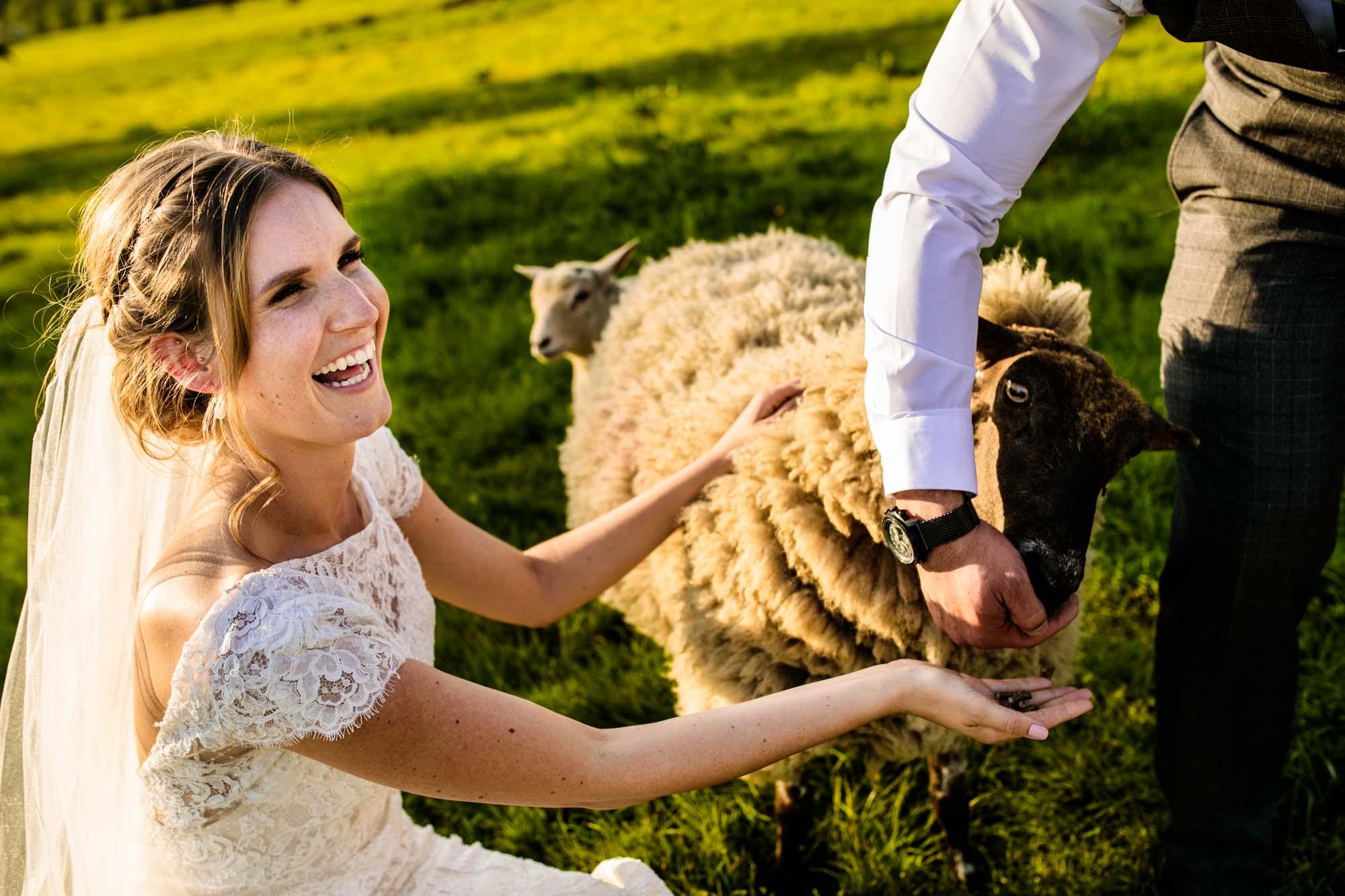 Thornsett Fields Farm Wedding Photographs